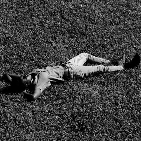Kona Grass Field BW