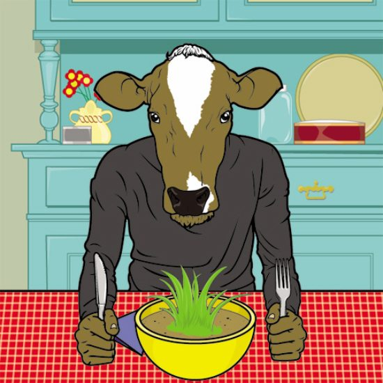 all-cows-eat-grass-kool-collection-03