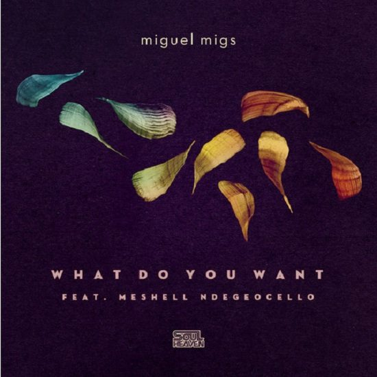 Miguel Migs What Do You Want Cover