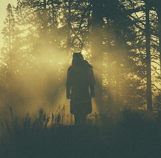 Thundercat-Woods-Silhouette