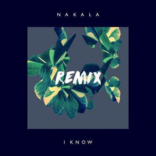 nakala-i-know-remix-cover